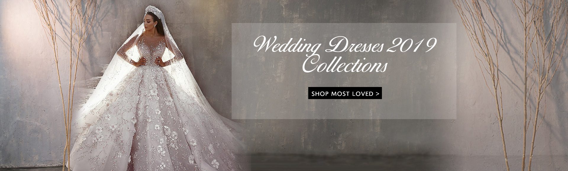 Wedding Dresses {{$GlobalData.Year}}