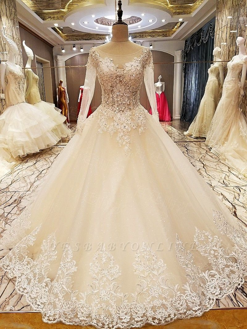 Puffy Long Sleeves Lace-up Lace Appliques Tulle Wedding Dresses