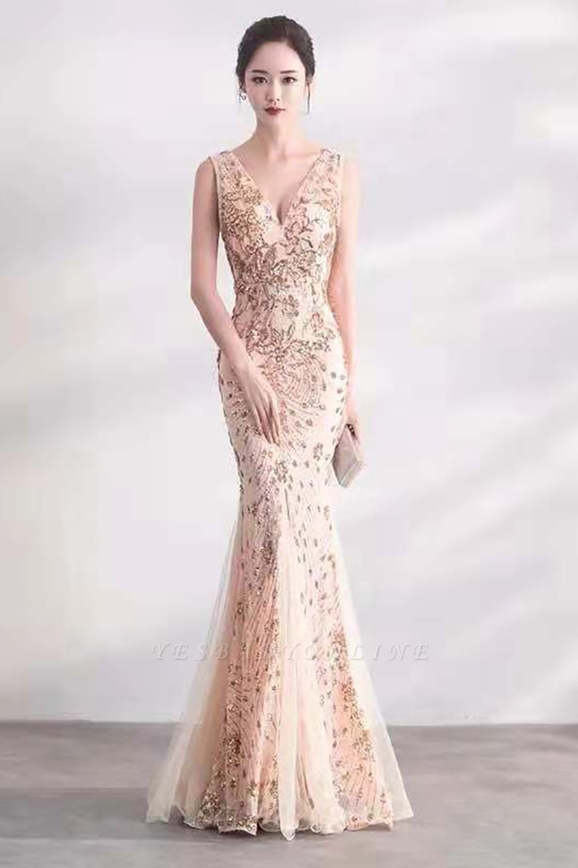 Cheap V-neck Long Prom Dresses   Sleeveless Floor Length A-line Evening Dresses