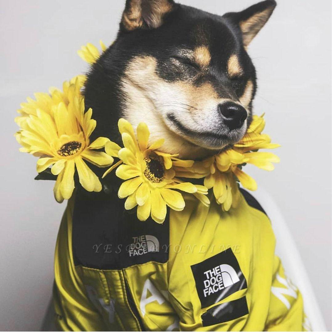 Dog Rain Poncho  for Small Medium Large Dogs