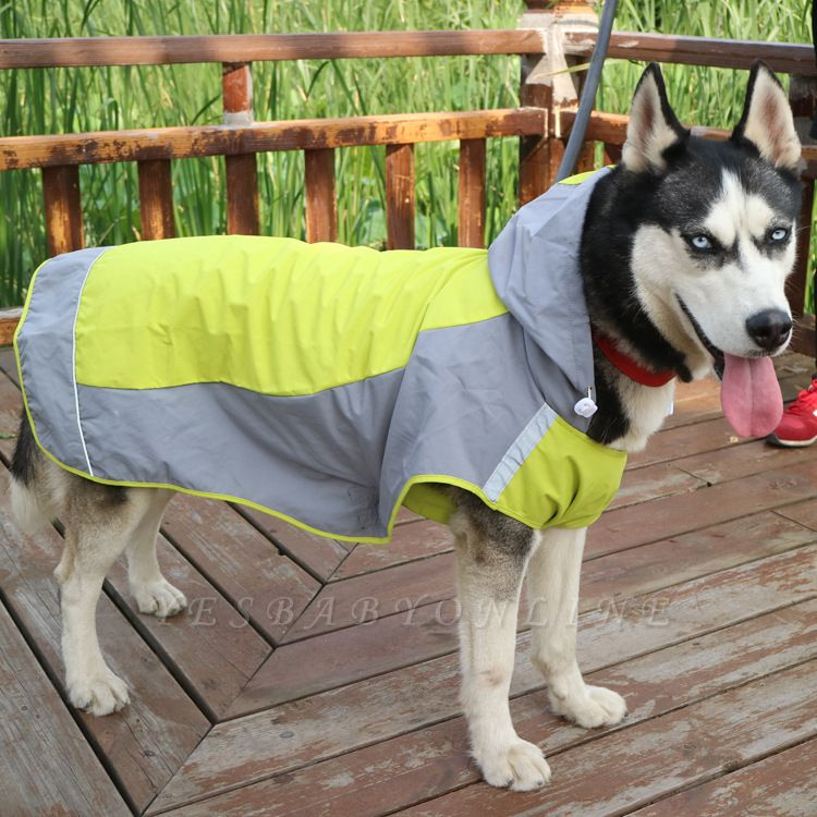 Perfect Rain Gear For Your Pet Fashion Dog Jacket Rainwear