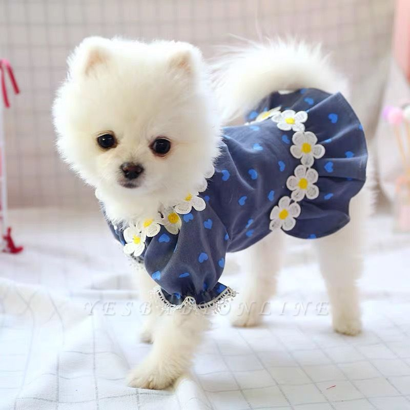 Print Short Sleeve Lace Girl Dog Skirt For Small Pet