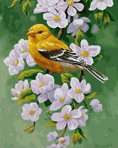 little yellow bird – Birds Paint By Number