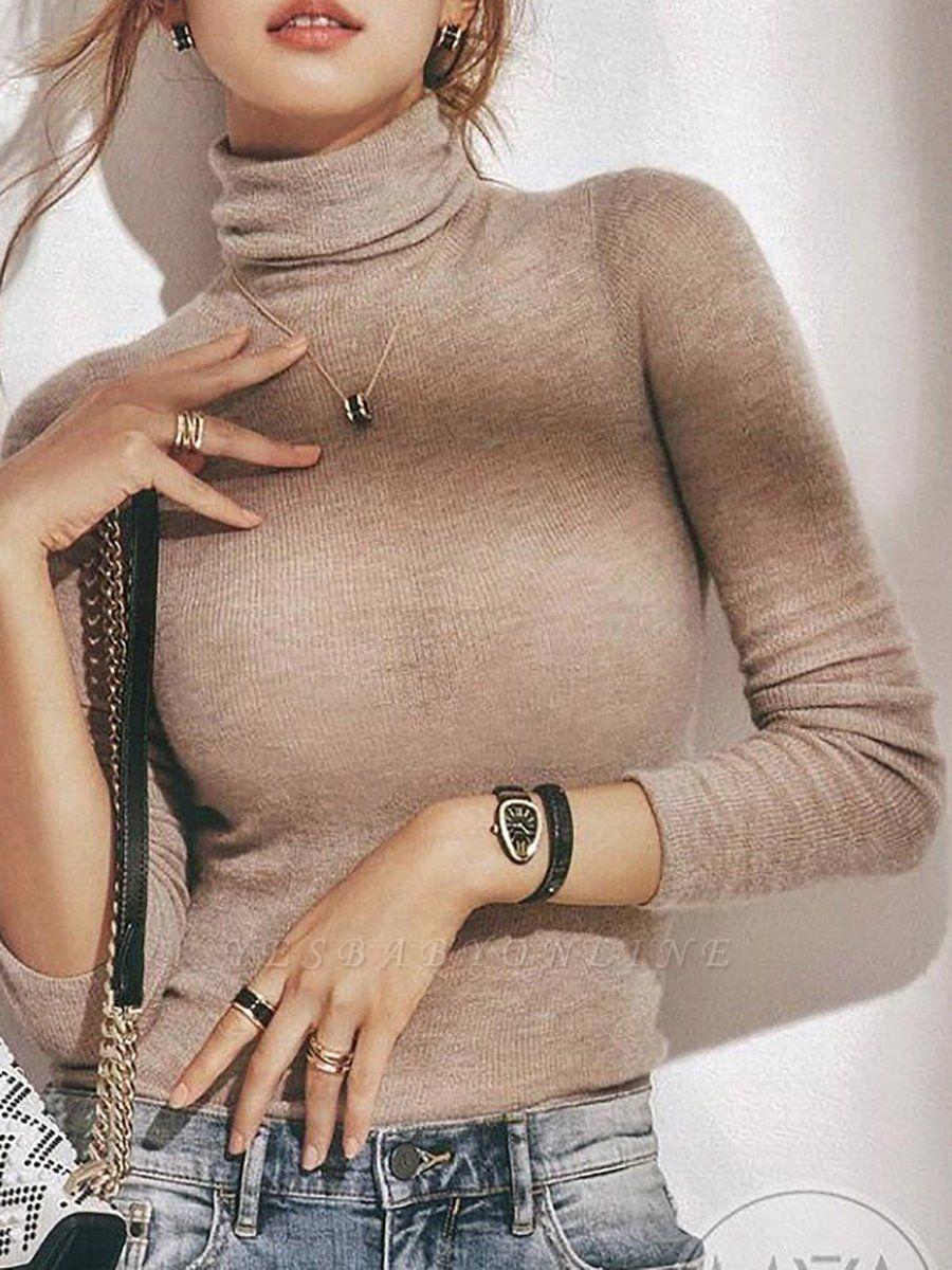 Long Sleeve Casual Sheath Sweater