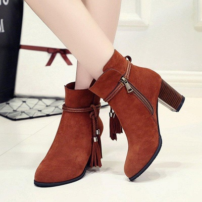 Chunky Heel Daily Tassel Zipper Boots On Sale_5