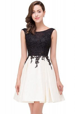 Cheap Short A Line Applique Tutu Prom Party Dress in Stock_1