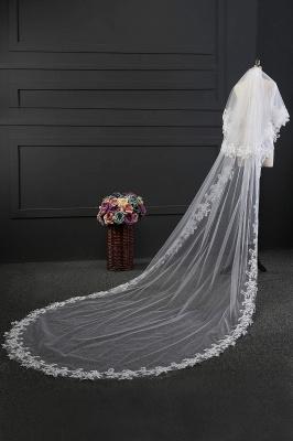Elegant Tulle lace Applique Edge 3*1.5M Wedding Gloves_5