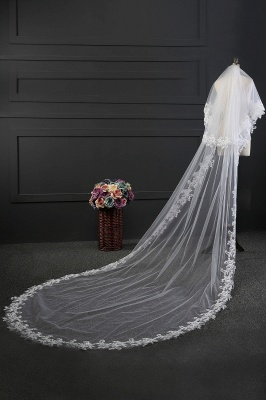Elegant Tulle lace Applique Edge 3*1.5M Wedding Gloves_4