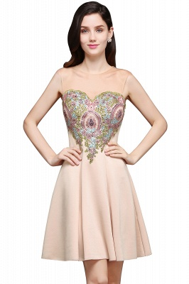 A-line Scoop Chiffon Short Homecoming Dress With Appliques_2