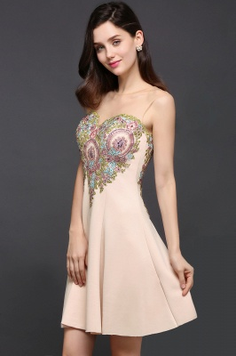A-line Scoop Chiffon Short Homecoming Dress With Appliques_6