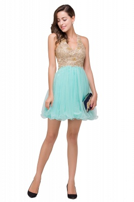Cheap Short Tulle A-line V-Neck Appliques Sleeveless Prom Dress in Stock_9