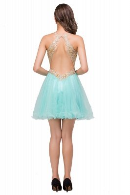 Cheap Short Tulle A-line V-Neck Appliques Sleeveless Prom Dress in Stock_6