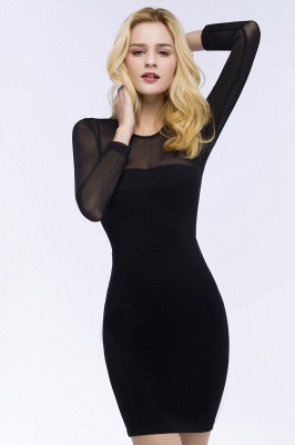 Jewel Long Sleeves Sheer Sexy Bodycon Black Short Party Dresses_5