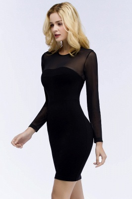Jewel Long Sleeves Sheer Sexy Bodycon Black Short Party Dresses_8