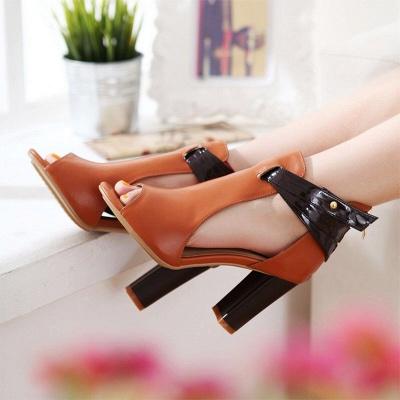 Hollow-out Peep Toe Zipper Summer Chunky Sandals_3