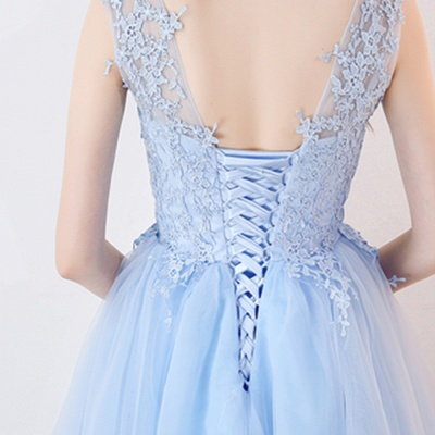 Baby-Blue Lace  Short Appliques Sleeveless Homecoming Dresses_9