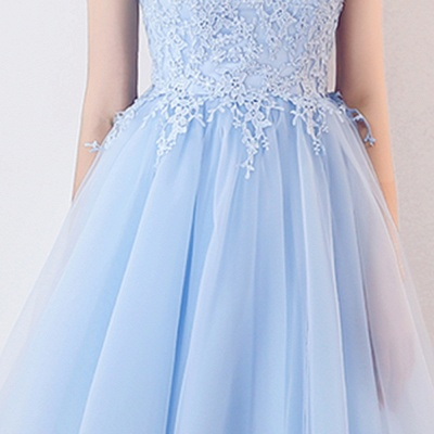 Baby-Blue Lace  Short Appliques Sleeveless Homecoming Dresses_8