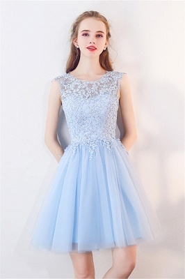 Baby-Blue Lace  Short Appliques Sleeveless Homecoming Dresses_1