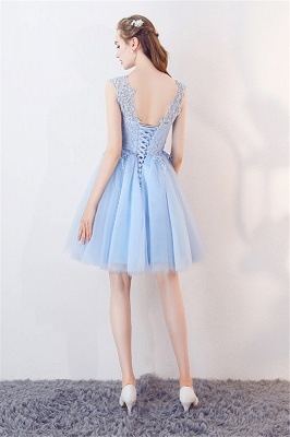 Baby-Blue Lace  Short Appliques Sleeveless Homecoming Dresses_3