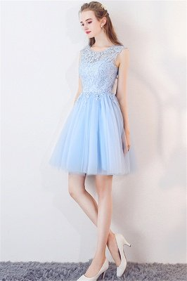 Baby-Blue Lace  Short Appliques Sleeveless Homecoming Dresses_4