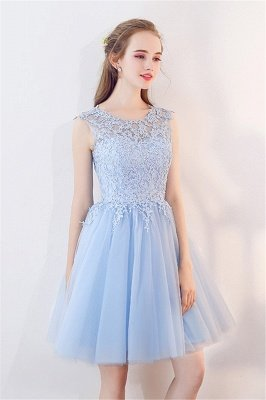 Baby-Blue Lace  Short Appliques Sleeveless Homecoming Dresses_7