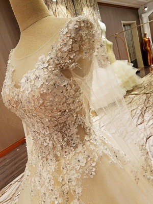 Puffy Long Sleeves Lace-up Lace Appliques Tulle Wedding Dresses_10
