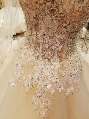 Puffy Long Sleeves Lace-up Lace Appliques Tulle Wedding Dresses_7