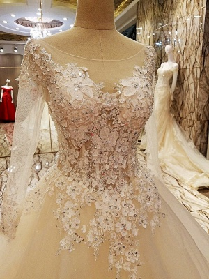 Puffy Long Sleeves Lace-up Lace Appliques Tulle Wedding Dresses_3