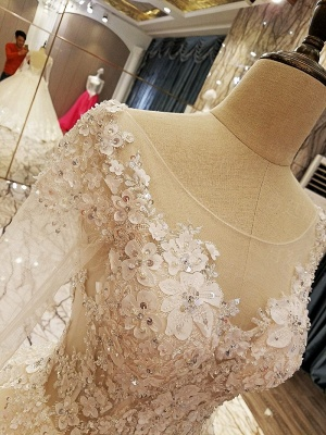 Puffy Long Sleeves Lace-up Lace Appliques Tulle Wedding Dresses_6