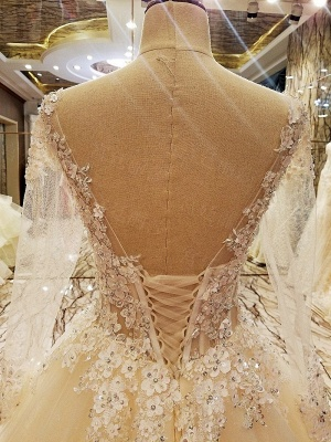 Puffy Long Sleeves Lace-up Lace Appliques Tulle Wedding Dresses_8