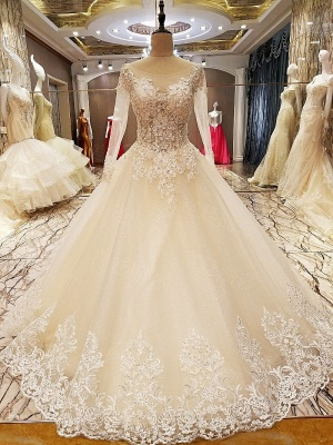 Puffy Long Sleeves Lace-up Lace Appliques Tulle Wedding Dresses_1