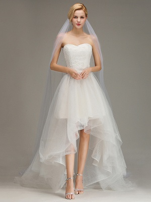 One Layer Cathedral Wedding Veil with Comb Tulle Lace Edge Bridal Veil_2