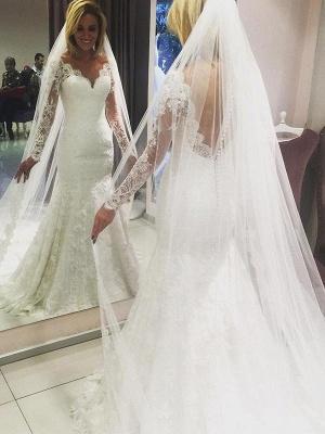Gorgeous Sweep Train V-neck Long Sleeves Lace Column Wedding Dresses_1