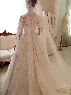 Dramatic Scoop Sleeveless Lace Appliques Wedding Dresses_3