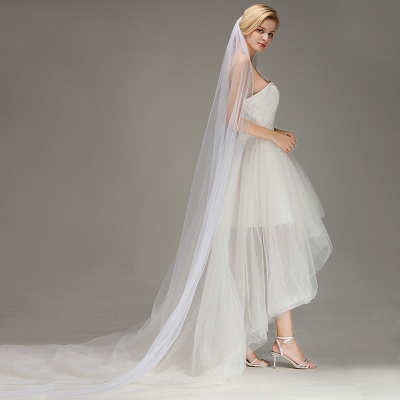 One Layer Wedding Veil with Comb  Appliqued Cathedral Length Bridal Veil_4