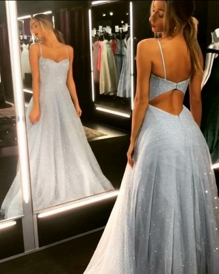 Sparkly Backless Dress  Floor Length Prom Dresses   Cheap Long Evening Gowns on Sale_1
