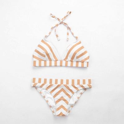 Triangle Pads Streaks Halter Two Piece Sexy Bikini Swimsuits_4