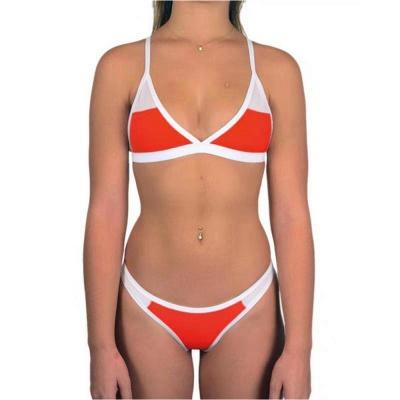 Triangle Pads Colorful Plain Sheer Net Sexy Bikini Sets_2