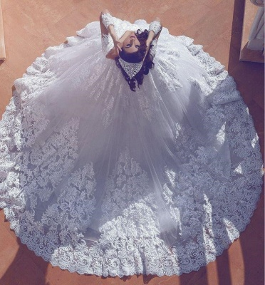 Long Sleeves Lace Ball-Gown Stylish Court-Train V-neck Wedding Dress_3