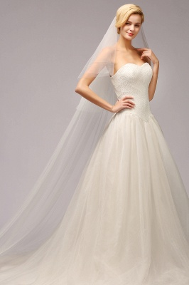 Excellent Lace Tulle Cathedral Wedding Veils   Bridal Veils