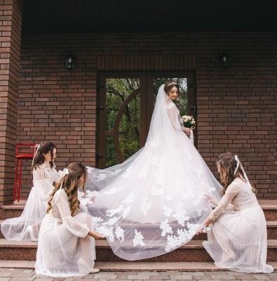 Glamorous Sleeveless V-Neck Lace Appliques Wedding Dresses_2