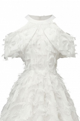 Gorgeous A-line High neck Artifical Feather Vintage Short Dresses_19