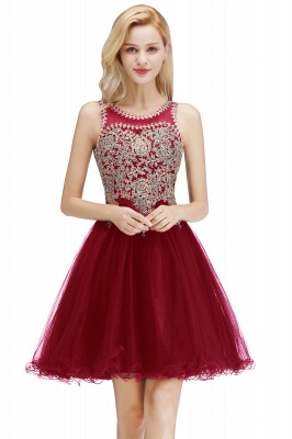 Cute Crew Neck Open Back Beaded Lace Appliques Homecoming Dresses_1