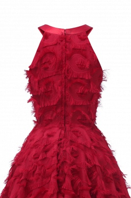 Gorgeous A-line Burgundy Halter Feather Princess Vintage Short Dresses_14