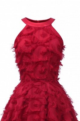 Gorgeous A-line Burgundy Halter Feather Princess Vintage Short Dresses_13
