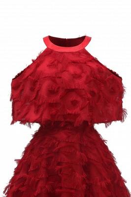 High neck Gorgeous Crew Neck Artificial Feather Dress Burgundy Short Dresses_13