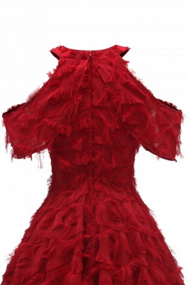 Gorgeous A-line High neck Artifical Feather Vintage Short Dresses_15