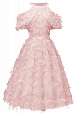 Gorgeous A-line High neck Artifical Feather Vintage Short Dresses_2