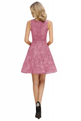 Princess V-neck Knee Length Lace Appliques Homecoming Dresses_14