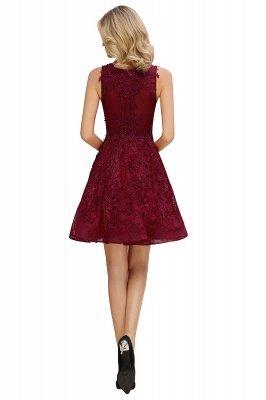 Princess V-neck Knee Length Lace Appliques Homecoming Dresses_11
